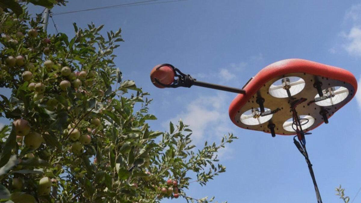 В Израиле разработали летающего автономного робота для сбора фруктов: