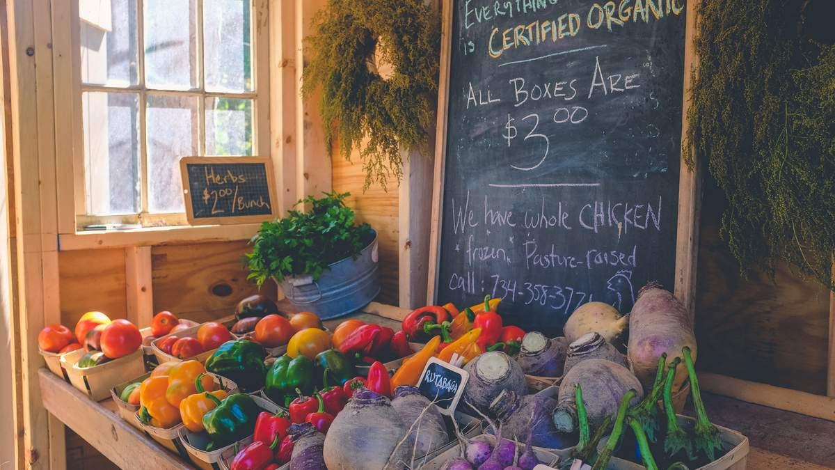 В Украине создают каталог экспортеров органической продукции