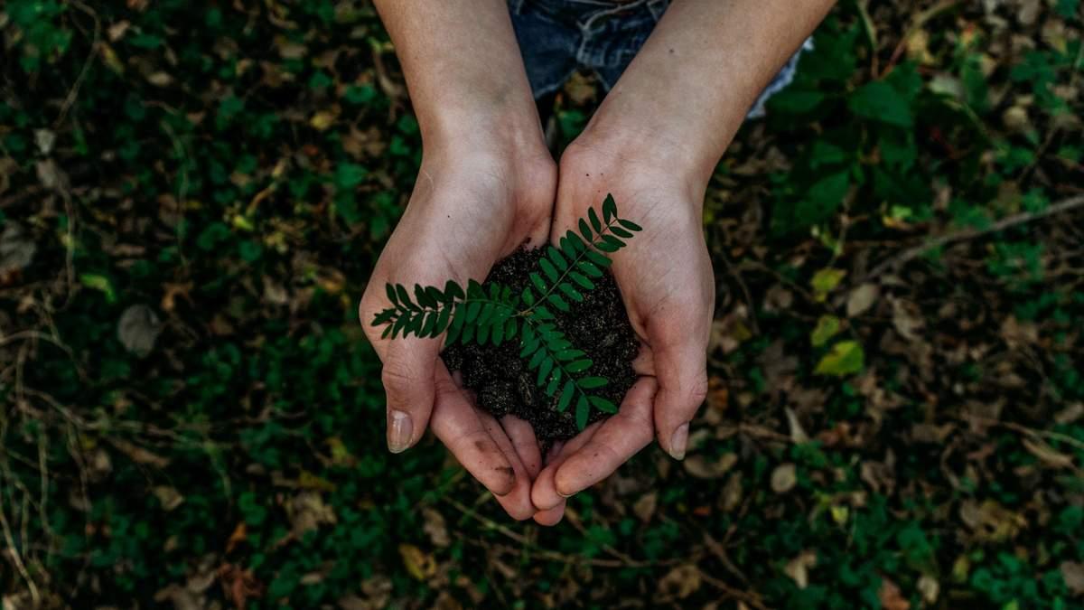 В Украине запускают ЭкоСистему, где собрана информация об экологии