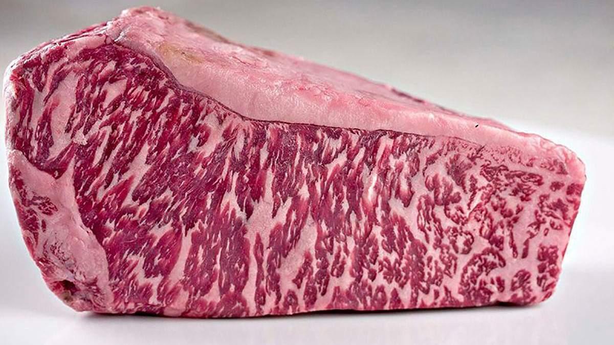 Японські вчені надрукували шматок яловичини на біологічному 3D-принтері - Інновації