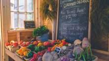 В Україні розробляють каталог експортерів органічної продукції: чому це важливо