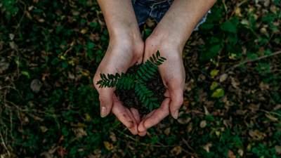 """В Україні запускають онлайн-платформу """"ЕкоСистема"""", у якій зібрана інформація про довкілля"""