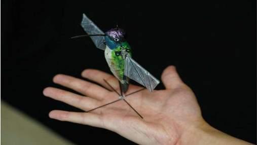 В США разработали робота-колибри: он оснащен искусственным интеллектом