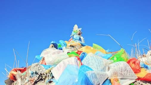 В Украине ограничили использование пластиковых пакетов