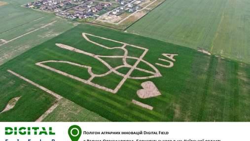 Исключительный рекорд: на поле высеяли огромный герб Украины