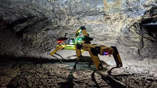 NASA учит робопса Boston Dynamics искать признаки жизни на Марсе