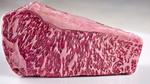 Японские ученые напечатали кусок говядины на биологическом 3D-принтере